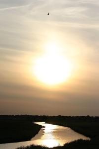 Sonnenuntergang im Holter Hammrich