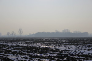 Im Rheiderland