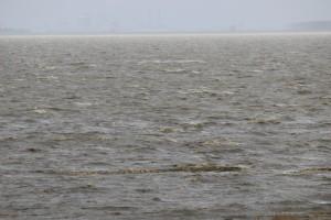 Der Wind war nicht mehr so stark wie am Vortag. Das Wasser aber noch sehr unruhig.